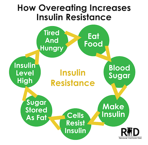 How overeating Increases Insulin Resistance
